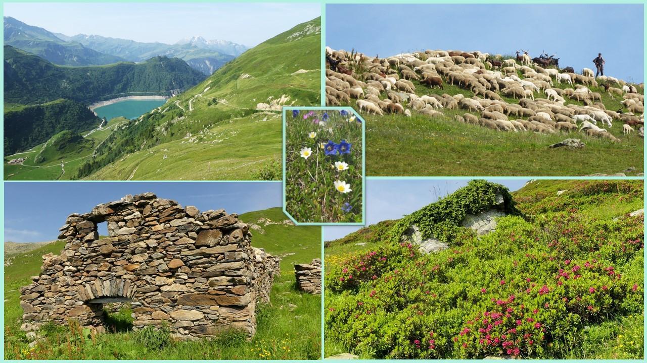 2021 07 23 les rochers des enclaves montage 1